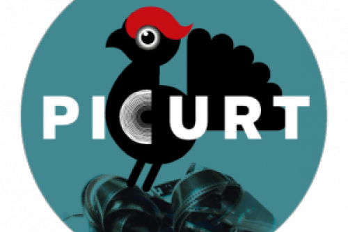 picurt-2014-624x624.png